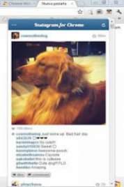Instagram for Chrome 5